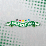 Bursasporluyuz grup logosu